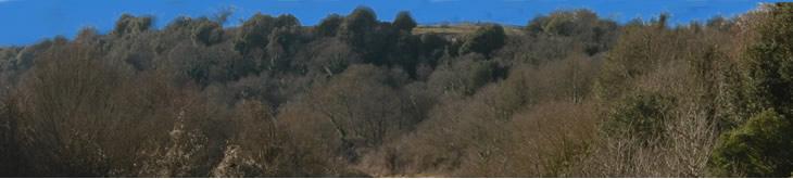 Etruscan Corner Etruria Territtory Landscape