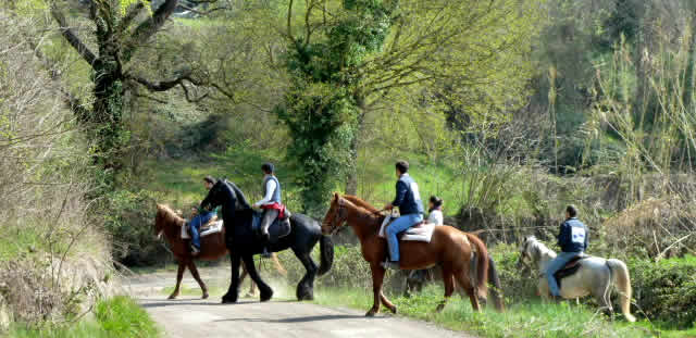 Tuscia on Horseback  	