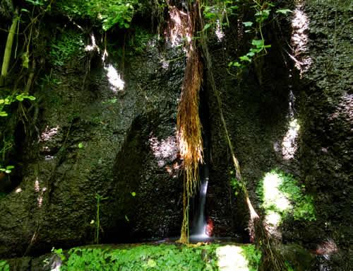 Le Sacre Sorgenti di Acquarossa Lavatoio Etruscan Corner
