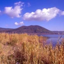 Etruscan Corner Lago di Vico e Monti Cimini Palude Canneto