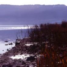 Etruscan Corner Lago di Vico e Monti Cimini Palude Canneto Autunnale