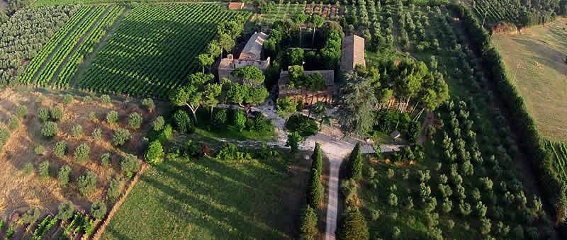 Etruscan Corner Agriturismo Antico Borgo La Commenda Montefiascone