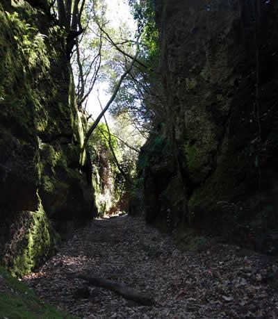 Tagliate Etrusche Vie Cave Vie Buie Blera