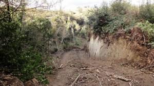 Etruscan Corner Giancarlo Mariotti Bianchi Selva del Lamone