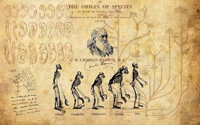 Origini dell'Uomo Creazionismo Evoluzionismo Disegno Intelligente. Charles Darwin