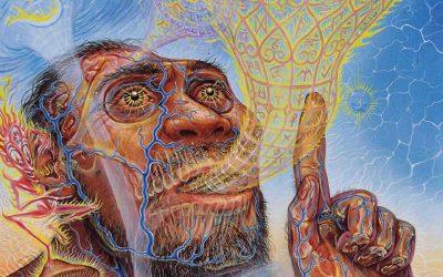 Origini dell'Uomo Il Linguaggio