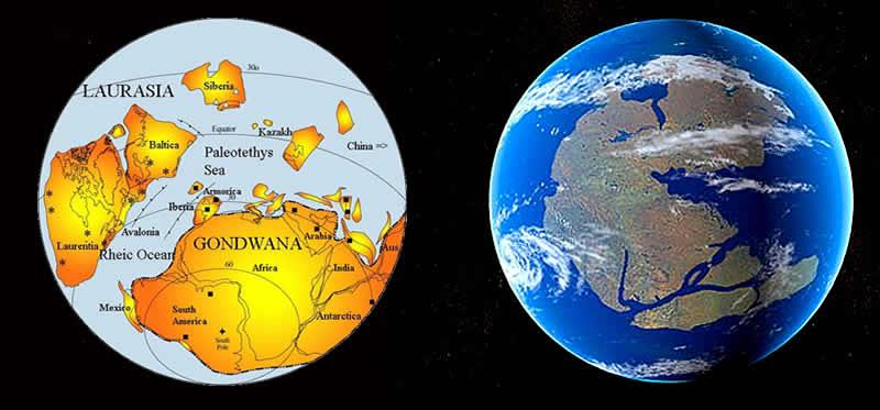 Foreste Pietrificate Supercontinenti Gowana