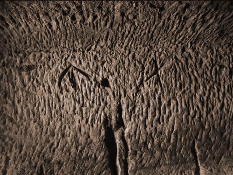 La Grotta dei Numeri - Simboli