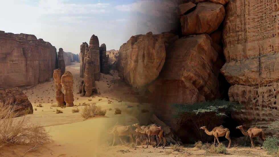 Scritto Nella Roccia - Arabia Saudita - Panorama Deserto