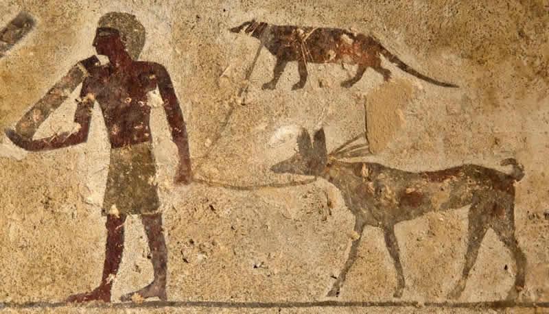 Scritto Nella Roccia - Shuwaymis - Affresco Tempio Beni-Hassan