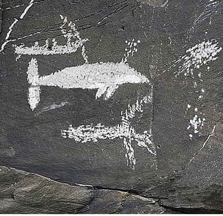 Scritto Nella Roccia - Siberia - Petroglifi Balena